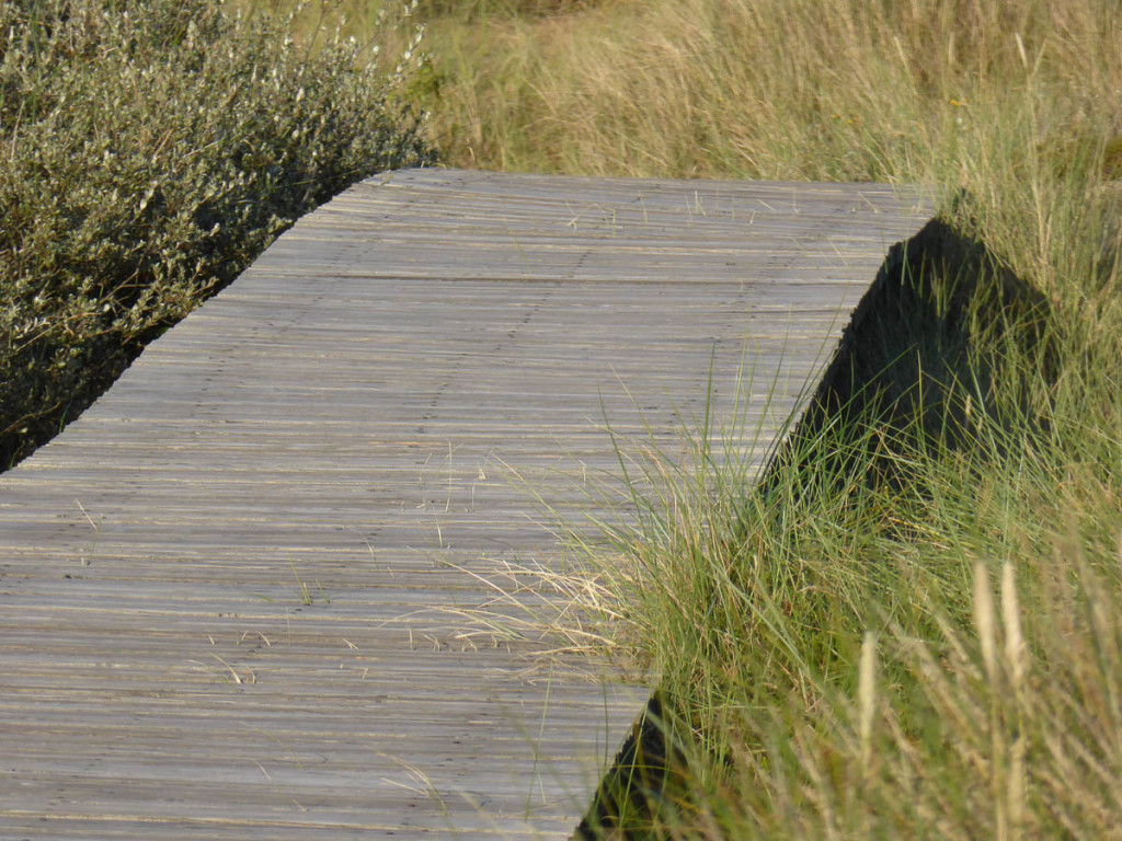 amrum-pension-norddorf-slide-3