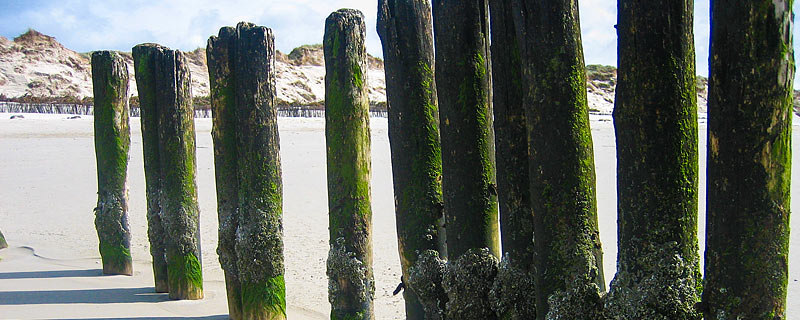 amrum-pension-strand-buhnen